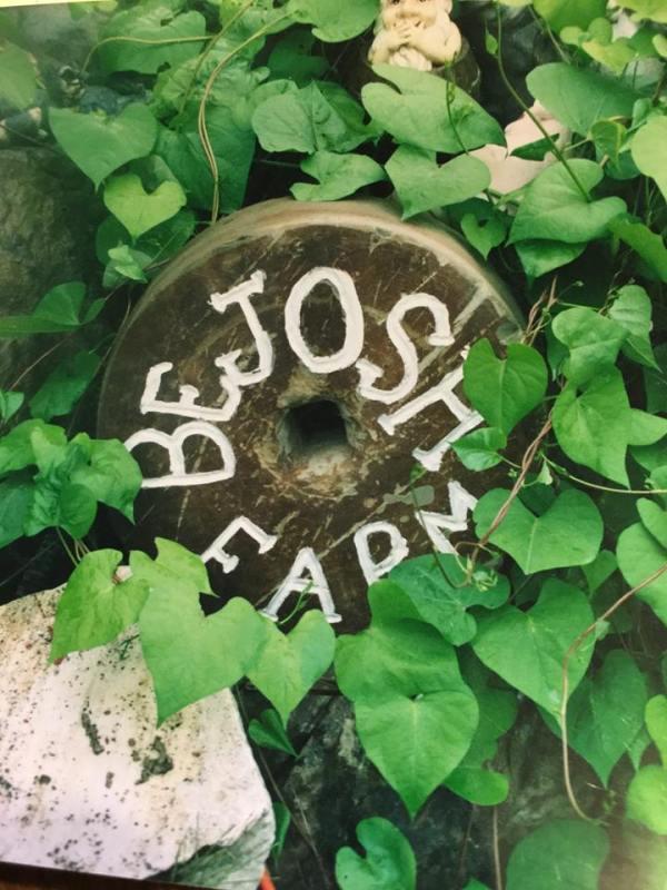 bejosh grinding stone
